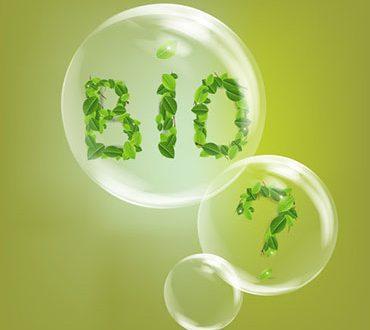 EcoBio • Cosa ne penso?